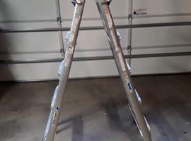 25 ft Multipurpose Ladder