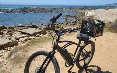 Electric Bike rental in Los Angeles