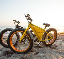 SONDORS Electric Bike (Fat Tires)