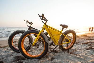 SONDORS Electric Bike (Fat Tires)