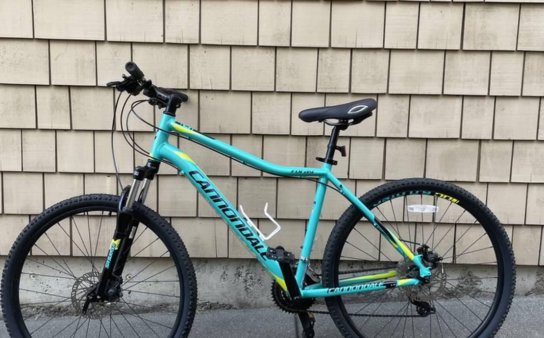 Cannondale Foray 4 Bike