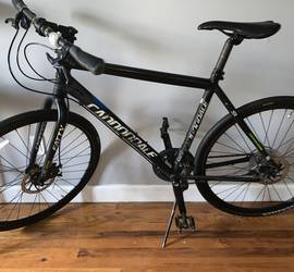 Large Adult Cannondale Road Bike