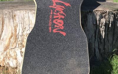 Electric Skateboard rental in Traverse City
