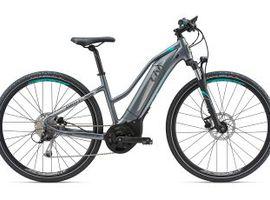 Electric Bike Amiti - E+