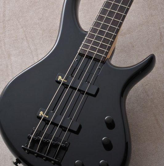 Toby Standard-IV Bass