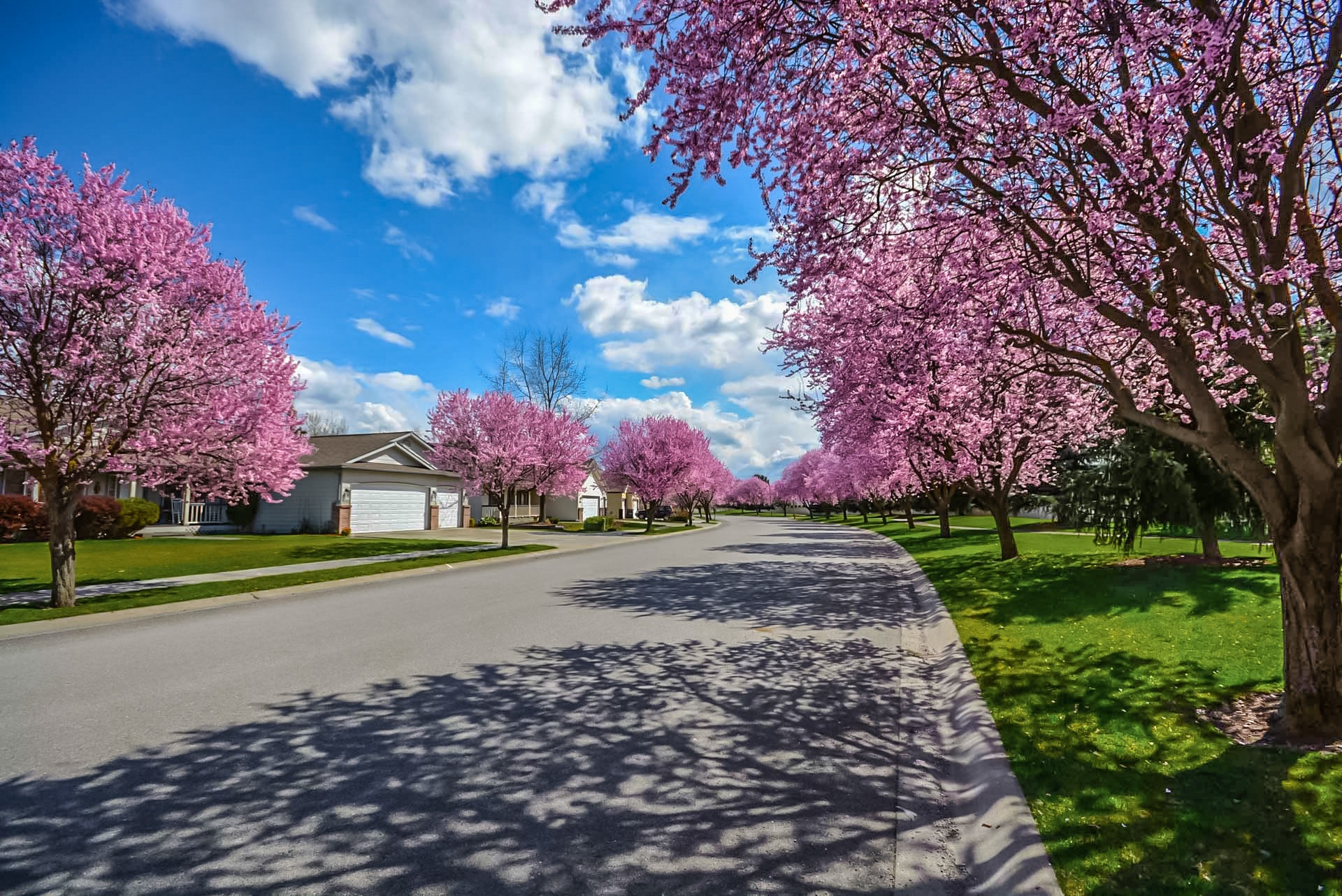 Top 8 Tips on How to Choose the Right Neighborhood